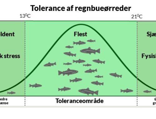 Økologisk tolerance: Temperaturens betydning for vildt