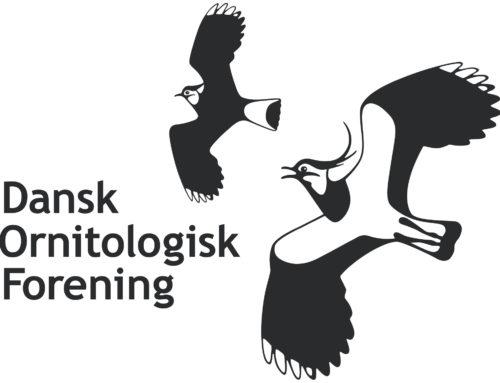 dofbasen.dk: Dansk Ornitologisk Forenings database over fugle